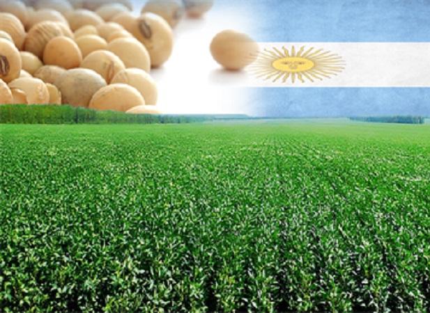 Soja: Argentina queda atrás de Brasil por China