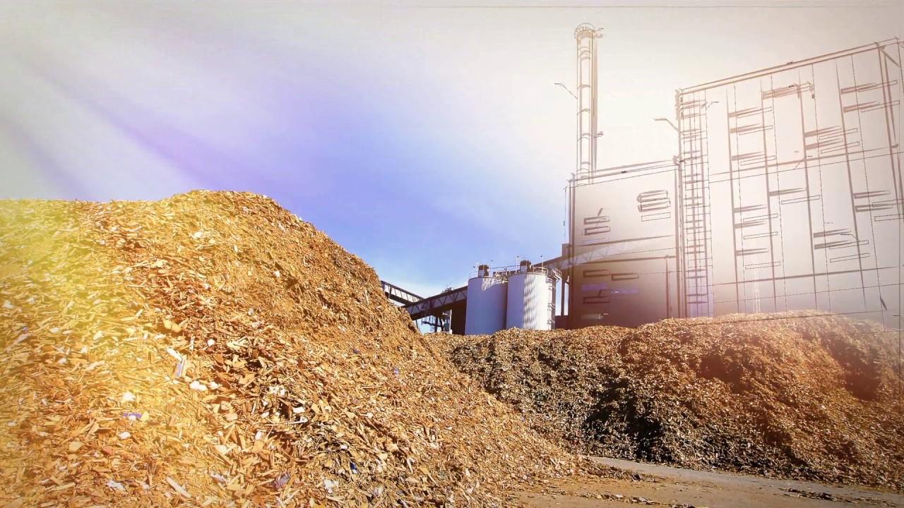 Primera central eléctrica a partir de biomasa